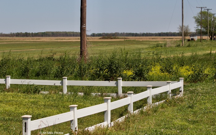 Farmland Behind