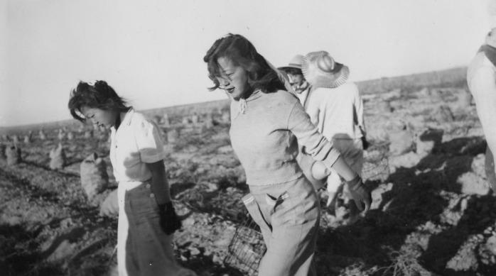Field Workers DDR
