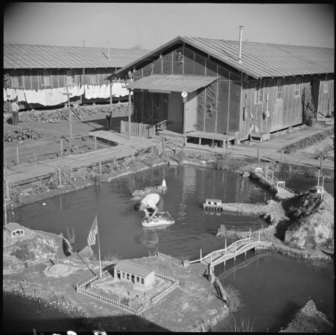 Miniature Pond DDA